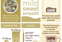 Celestial Steepology Infographic / How well do you know tea? Learn more about our black, green, white, herbal, and rooibos teas!