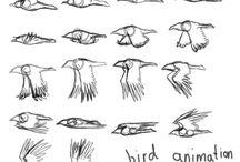 animation - birds