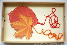 Říjen/Listopad / - plody podzimu - houbaříme - zvířata na poli - moje tělo  - potravinová pyramida (výživa)
