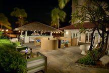 Bar & Lounges / Bar,Cocktail, Weddings, Honeymoon,Destination, Travel, Relax, Enjoy, Happiness, Aruba, Party,Beach, Sunset, Windy, Sun, Ocean, Fun,