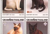 "cats - ubiquitous creatures - postage stamps / ""If you have to ask, you'll never know. If you know, you need only ask."""