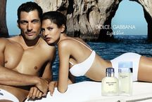 Fragrance campaigns