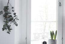 Fensterbank | Window board ♡
