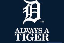 Show 'Em You're A Tiger (Detroit Tigers) / by Sophia Rose