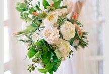 Noivas / Tudo para noivas