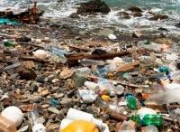 zee vervuiling