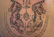 tigresas e tigres