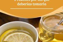 recetas adelgazar