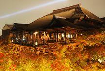 清水寺のライトアップ / 京都の清水寺の紅葉 ライトアップ