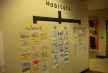 Habitats Classroom