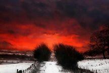 Winter Dreamland / by Angela Mae Cheetham