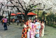 Colorful stories from Japan / My daily adventures in Japan, a country I am discovering for the following months.