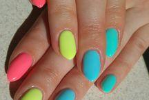 hybrydy - neon koral