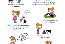 Dog Safety / Keep you and your kids safe around dogs