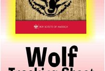 Cub Scout New Program / by Amy Morelli Russo