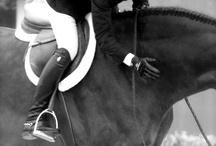 Horses / by Sarah Charlton