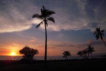 Hawaii vacation / Vacation