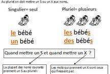 Grammaire orthographe conjugaison