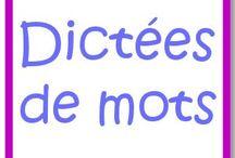 orthographe/vocabulaire