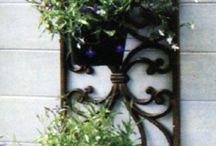My Outdoor garden ideas