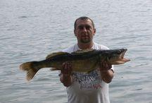 Wędkowanie - Jezioro Solińskie