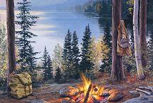 Darrel Bush paintings