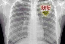 VfB <3