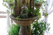 Garden in house 정원을 집안으로 들이다
