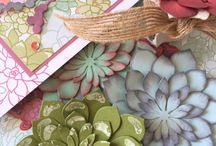 Oh So Succulent Stampin Up! / Stampin Up!, stamping, crafts, succulents, flowers, birthdays, all occasion