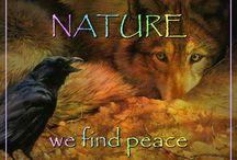 Nature/animals / by Bobbie Mohler