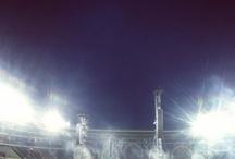 Concert | ColdPlay | 2012 , Torino , ITA