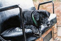 Chris Chantland's Retriever Paintings / Original oil, acrylic, watercolor and graphite artwork by Chris Chantland.