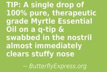 butterfly oils
