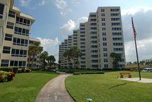 Surf & Racquet / Surf & Racquet, Sarasota Florida