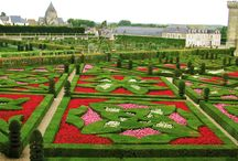 My Loire Valley / loire valley, france, chateaux,