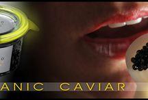 Caviar de Riofrio / World's first organic caviar farmed in Spain