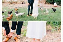 * weddings * / illo inspiration