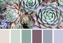 Color combinations