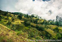 Travel Inspiration: Indonesia