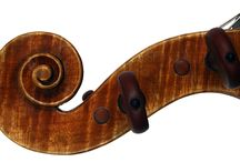 Viola Studies / by Patricia Belyea