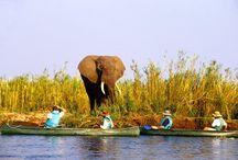 Lower Zambezi / #LowerZambezi #SuperbZambia #ExploreZambia