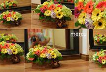 Hoa dinh ki / Photo & Flowers - by ngohai - 0908552630 www.damcuoi.vn - www.mercy.vn