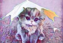 Animal artwork / All cute and amazing animal and pets (cat, dog, rabbit, squirrel, fox etc)pictures filtered by Picas app.