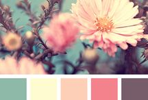 Color palletes / by Farah Lynn Designs