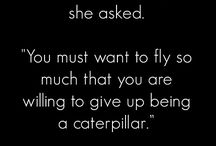 caterpillar transformation quotes