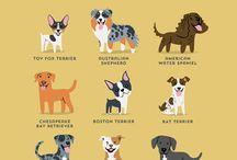 Dogspirations