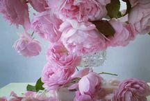nick knight- flowers