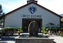 Winery / winery