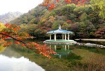 Jeongeup Dél- Korea