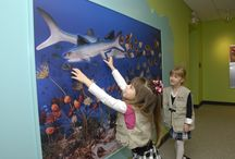 Play Museum / The Mary Ann MacLean Play Museum is a hands-on children's gallery in which children will learn what it is like to work at a museum through play. Children can choose from a variety of activities in the Play Museum--all designed for kids ages 3-10. The Play Museum is a free, fun, and unique educational resource for families and school groups.